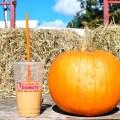 Dunkin Donuts Pumpkin Iced Coffee