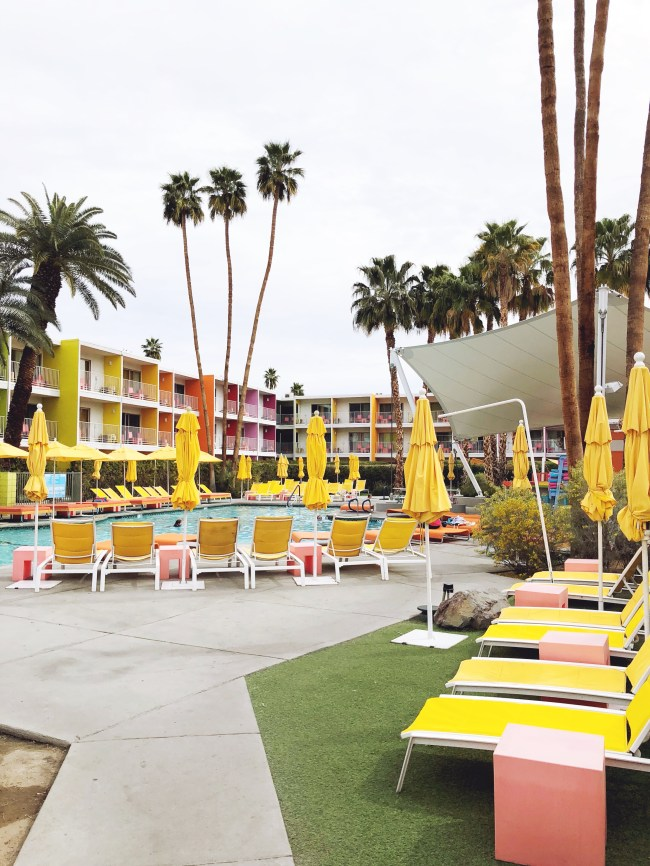 the saguaro pool party