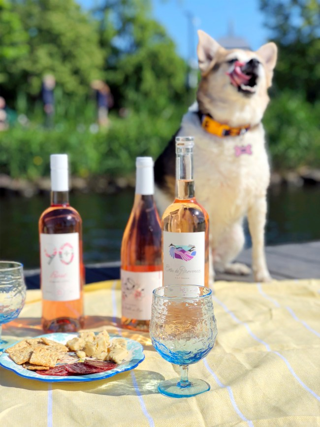 where to have a picnic in boston