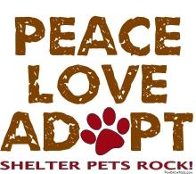 Peace Love Adapt Shirt