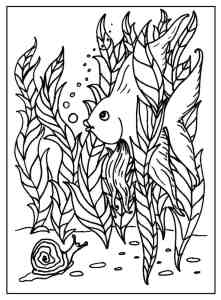 S.Mac's Funny Fish Coloring Page, Angel