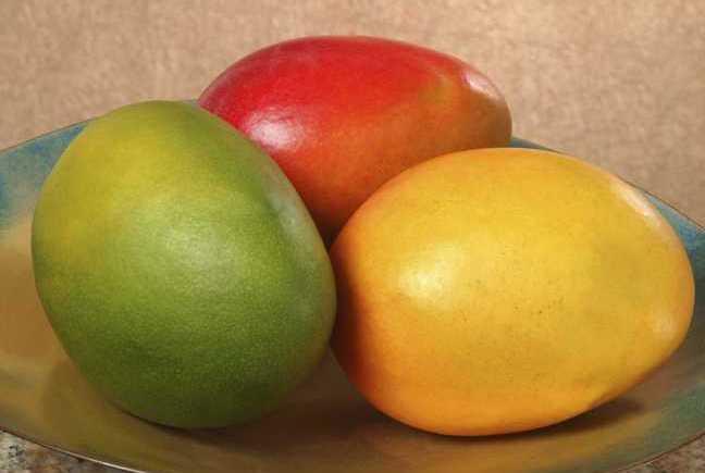 Dobite Shëndetësore Të Frutës Mango