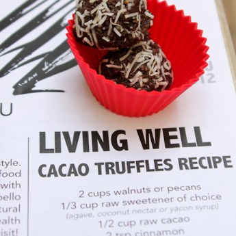 118 Degrees Vegan Raw Cacao Truffles