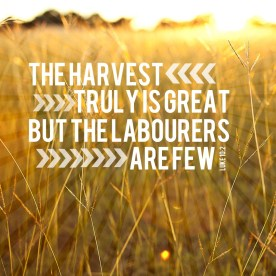 The harvest is truly great but the laborers are few.