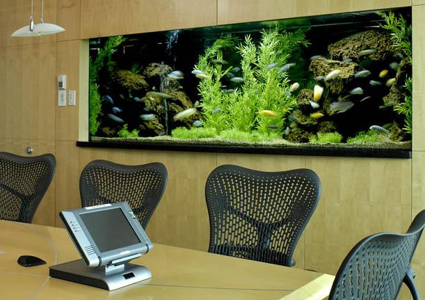 Saltwater Aquariums Ponds & Water Features Freshwater Aquariums Fish
