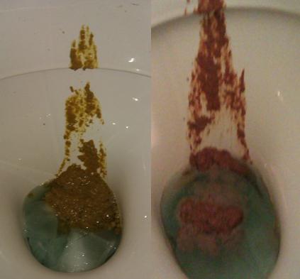 toilet fart sounds