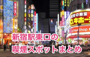 Kabukicho-Sinjyuku-Tokyo_2014_Ⅱ