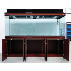 Large 8 Feet Aquarium Set | My Aquarium