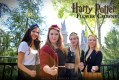 Harry Potter Flower Crowns
