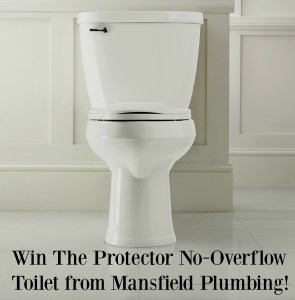 Check Out Our New Toilet From Mansfield Plumbing! (Giveaway)