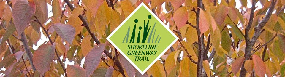 Shoreline Greenway Trail