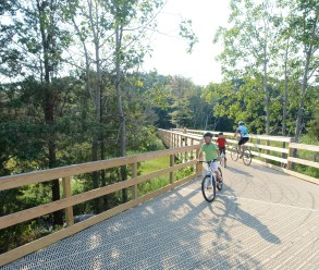 Shoreline Greenway Trail boardwalk at Hammonasset Beach State Park