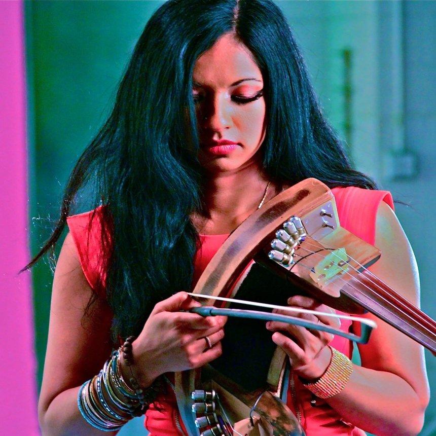 gingger shankar