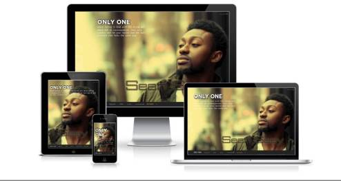 Sean Seay's ONLY ONE responsive mini website