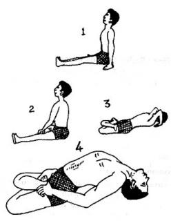 steps for fish pose
