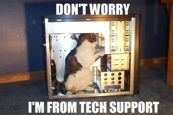 Kitty going Don't worry, I'm from Tech Support