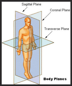 Planes of the Body Hip Alignment Bikram Yoga