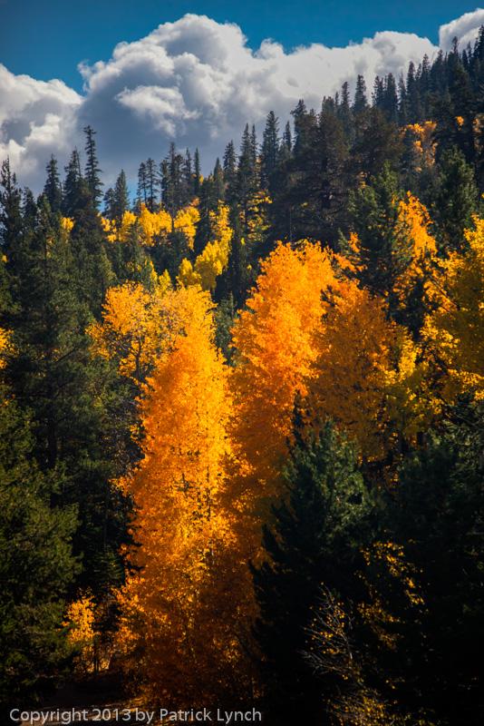 PL20131010-Fall-Colors-0472_3_4v2