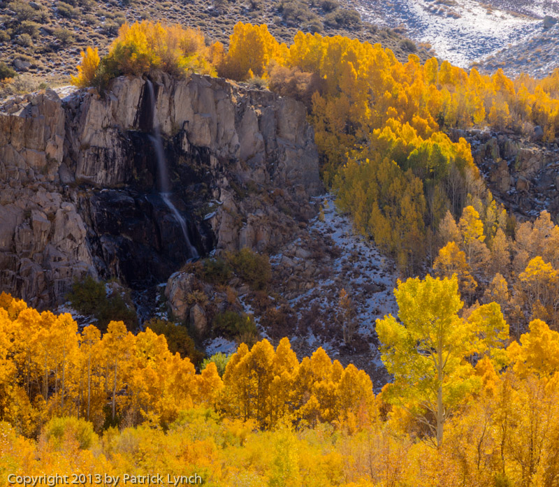 Waterfall and Aspens