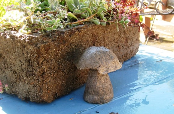 With a bit of the extra cement mix, I molded up a tiny mushroom.