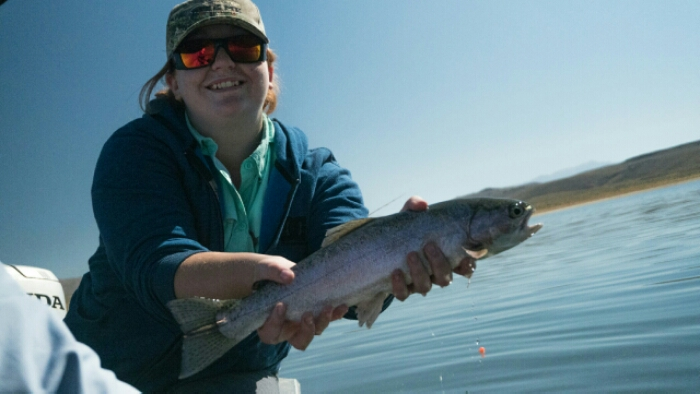 Crowley lake fly fishing mammoth lakes ca for Mammoth fishing report