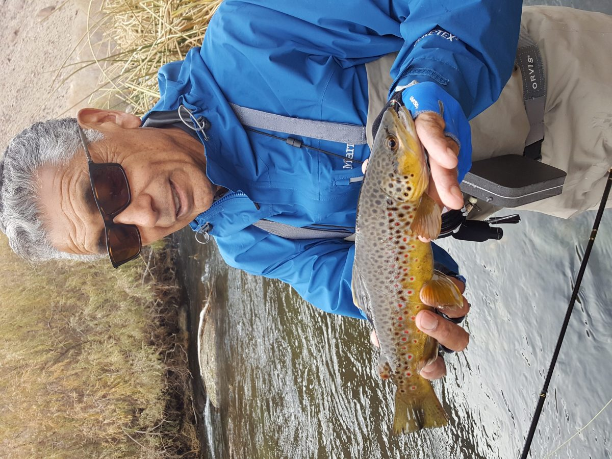 Lower owens river fly fishing bishop ca 12 for Bishop fishing report