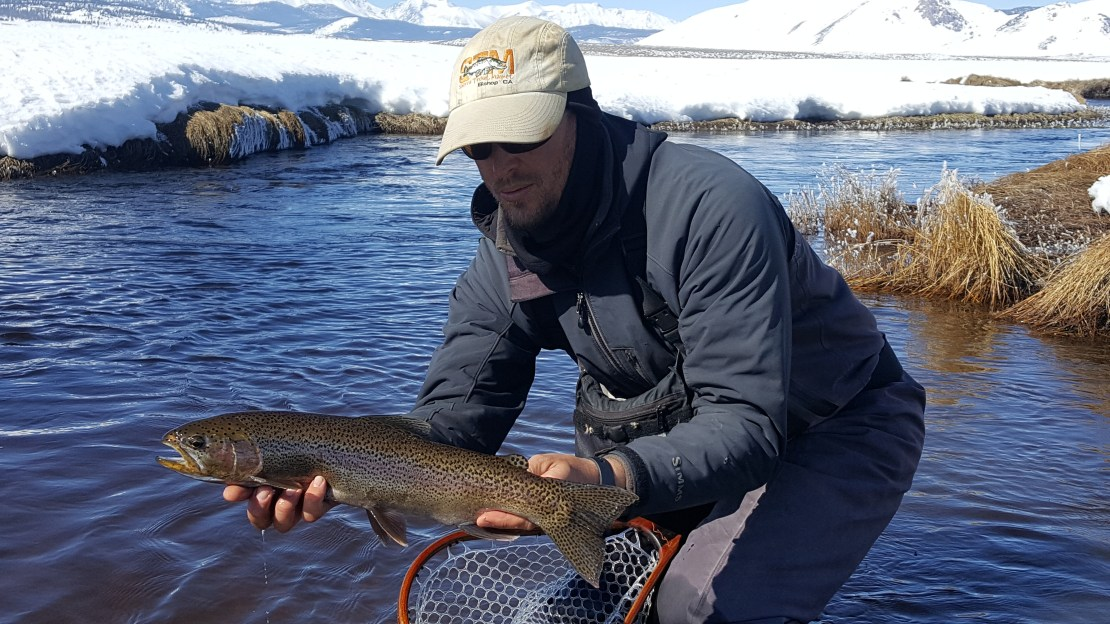Mammoth lakes and bishop fishing reports sierra trout for Fl fishing report