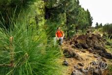 Павел присел отдохнуть в лесу из канарских сосен