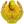 coa-icon