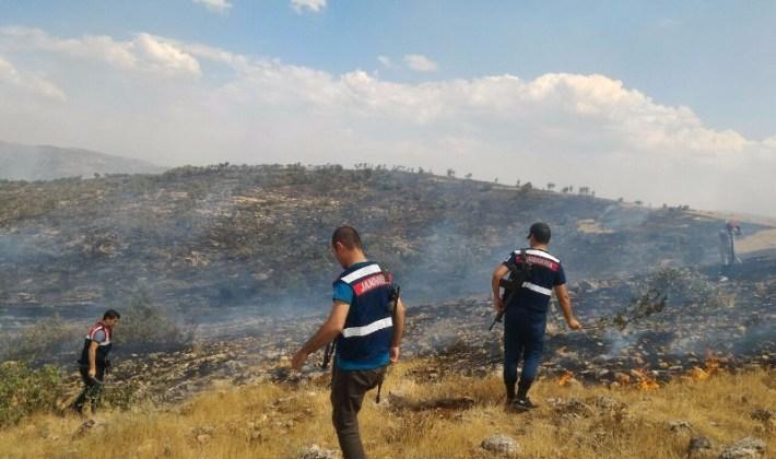 Siirt'te Çıkan Orman Yangına İtfaiye Ve Jandarma Müdahale Etti