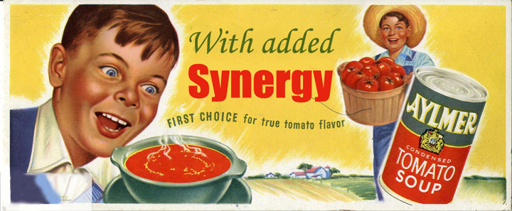 Synergy Soup