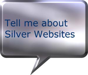 Silver Websites web design company