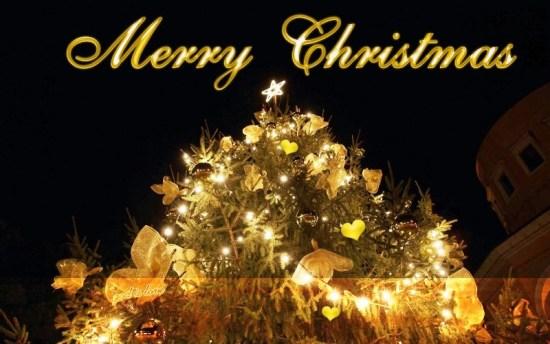gambar DP BBM dan kartu ucapan selamat Hari Natal  (14)