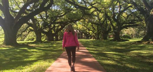 What to see in Louisiana: welcome to Oak Alley p Plantation