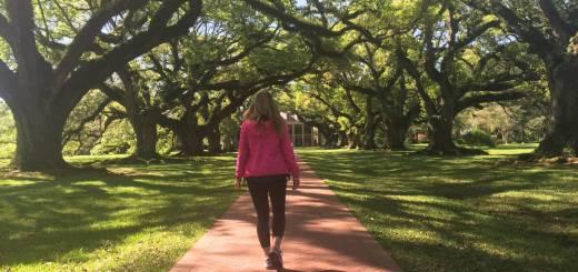 Cosa visitare in Louisiana,  benvenuti ad Oak Alley Plantation