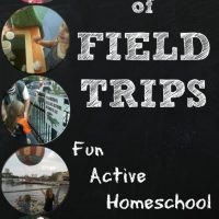 The Value of Field Trips w/ Free Printable