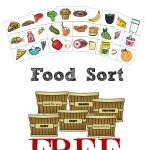 Food Groups Unit Study w/ Printable Food Sort Game