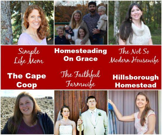 Homestead Blog Hop Hosts Feb 2017