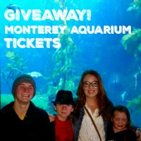 Monterey Aquarium Giveaway 200 Button
