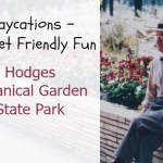 Daycations – Budget Friendly Fun