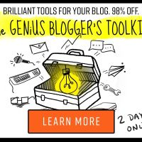 Flash Sale – THE GENIUS BLOGGER'S TOOLKIT Ultimate Bundle