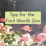Tips for the Fort Worth Zoo