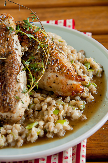 Roast Chicken breasts with Barley Risotto
