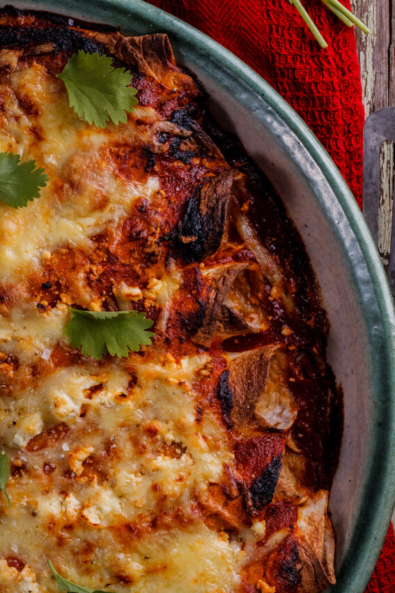 shredded chicken enchiladas