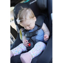 Small Crop Of Graco 4ever All In 1 Car Seat