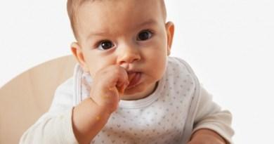 6 loại thực phẩm tốt cho bé vào mùa thu