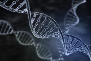 10-exciting-advances-scitech-2015-3