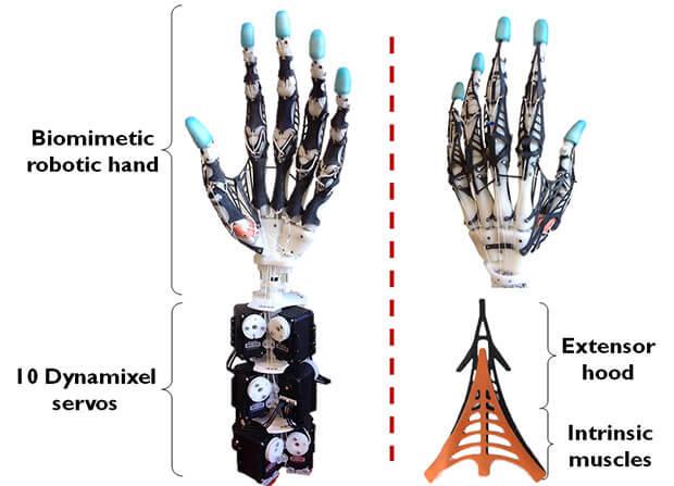 robot-hand-6