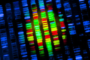 Is the World Ready for Synthetic Life? Scientists Plan to Create Whole Genomes