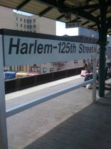 Senior fellow said look to Harlem for value and stability